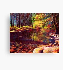 Summer Yosemite River Canvas Print