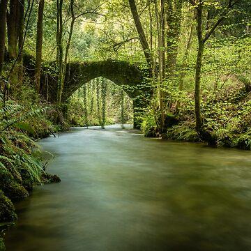 Old rock bridge over Filveda river by homydesign