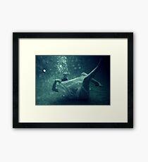 Great White Bear Framed Print