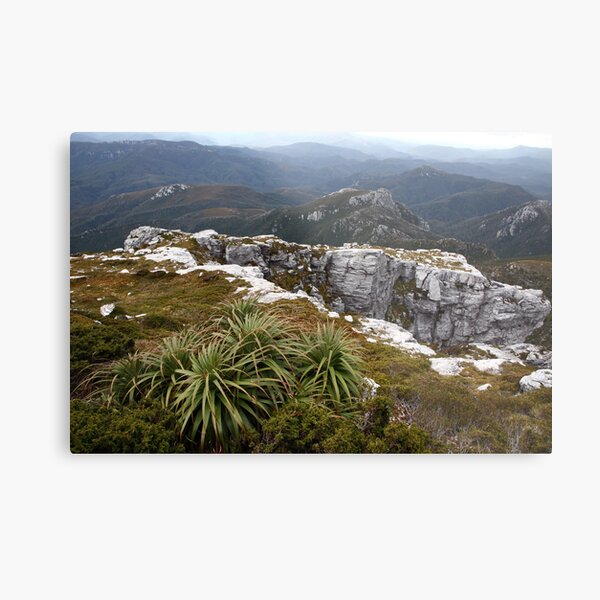 View from Frenchmans Cap, Franklin-Gordon Wild Rivers National Park, Tasmania Metal Print