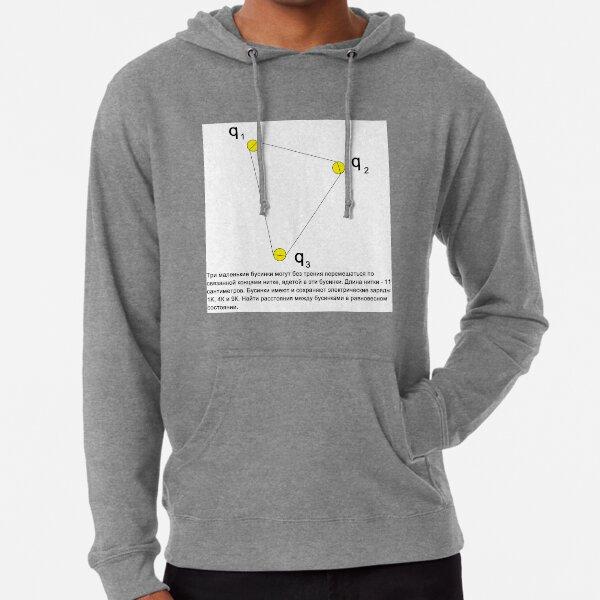 #Diagram #Три #маленькие #бусинки #трение #перемешаться #связанной #концами #нитке #вдетой #бусинки #Длина #нитки #сантиметров #Бусинки #имеют #сохраняют #электрические #заряды #Найти #расстояния Lightweight Hoodie