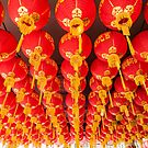 Penang Chinese Lanterns by TRVLR