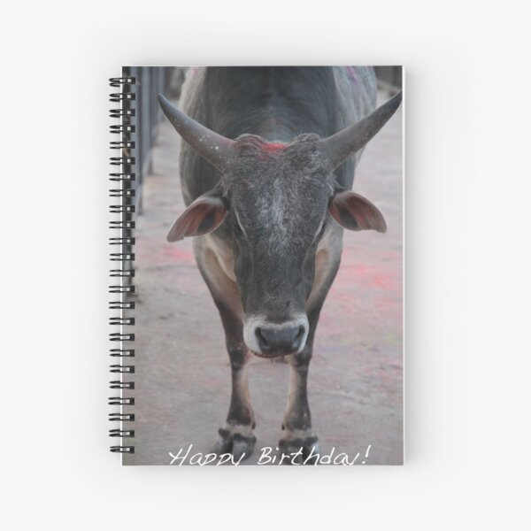 Holy Cow Birthday Spiral Notebook