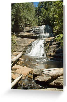 Lady Barron Falls, Mt Field National Park, Tasmania by SusanAdey