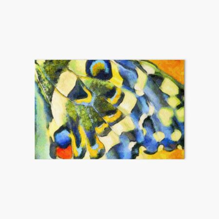 Old World Swallowtail Butterfly wing Art Board Print