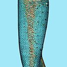 Mein großer Fisch by Vilela Valentin