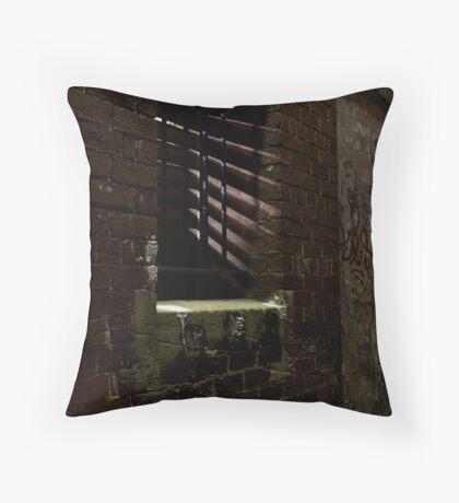 Backdoor Throw Pillow