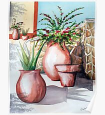 Pot and Bougainvillea Poster
