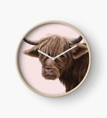 highland cattle portrait  Clock