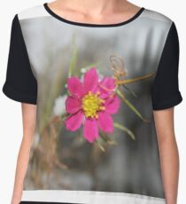 #nature #flower #outdoors #leaf #summer #garden #bright #growth #season #horizontal #colorimage #nopeople #plant #colors #closeup #fragile #day Chiffon Top