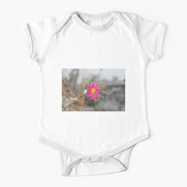 #nature #flower #outdoors #leaf #summer #garden #bright #growth #season #horizontal #colorimage #nopeople #plant #colors #closeup #fragile #day Short Sleeve Baby One-Piece