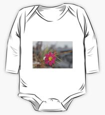 #nature #flower #outdoors #leaf #summer #garden #bright #growth #season #horizontal #colorimage #nopeople #plant #colors #closeup #fragile #day One Piece - Long Sleeve
