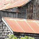 Rusted Roof Tops by Tracy Wazny