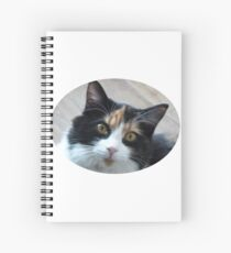 Calico pussy flea Spiral Notebook