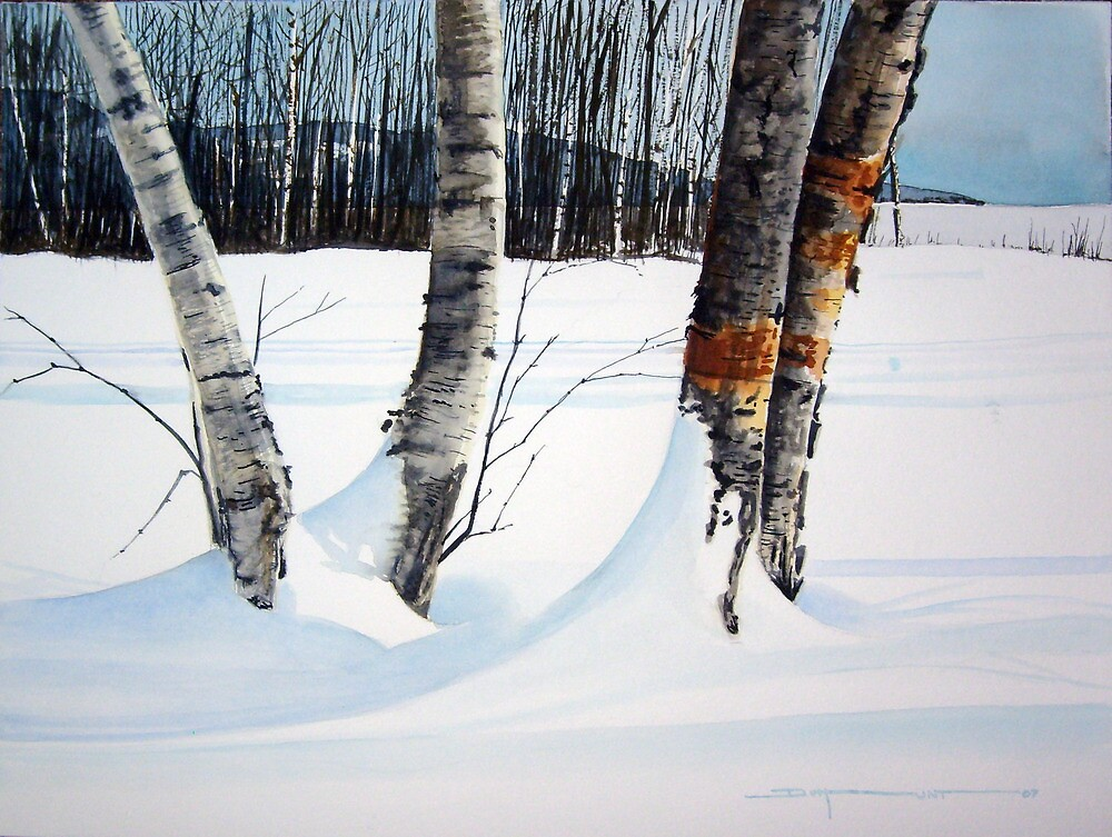 Winter Shadows by Douglas Hunt