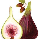 Figs by Lucinda Kidney