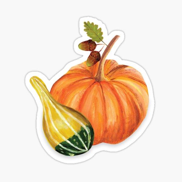 Pumpkin and Squash Sticker