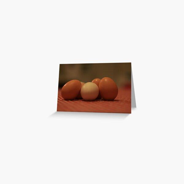 Fresh Eggs.... Greeting Card