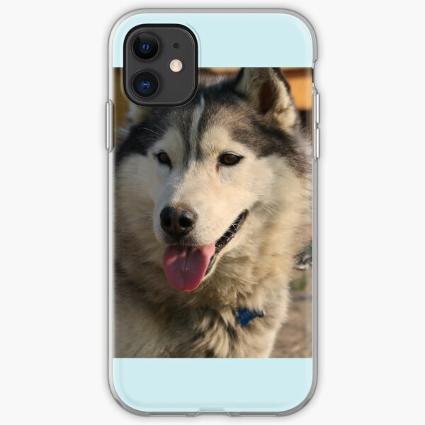 Canadian Malamute Husky iPhone Soft Case