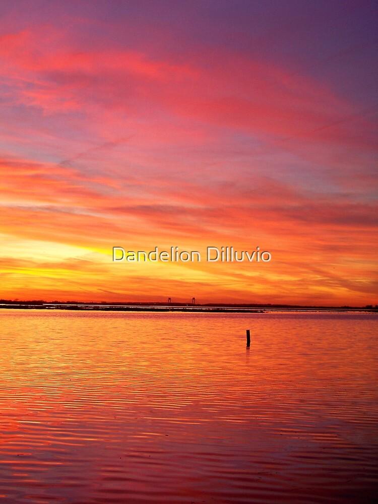 Fire in the Sky by Dandelion Dilluvio
