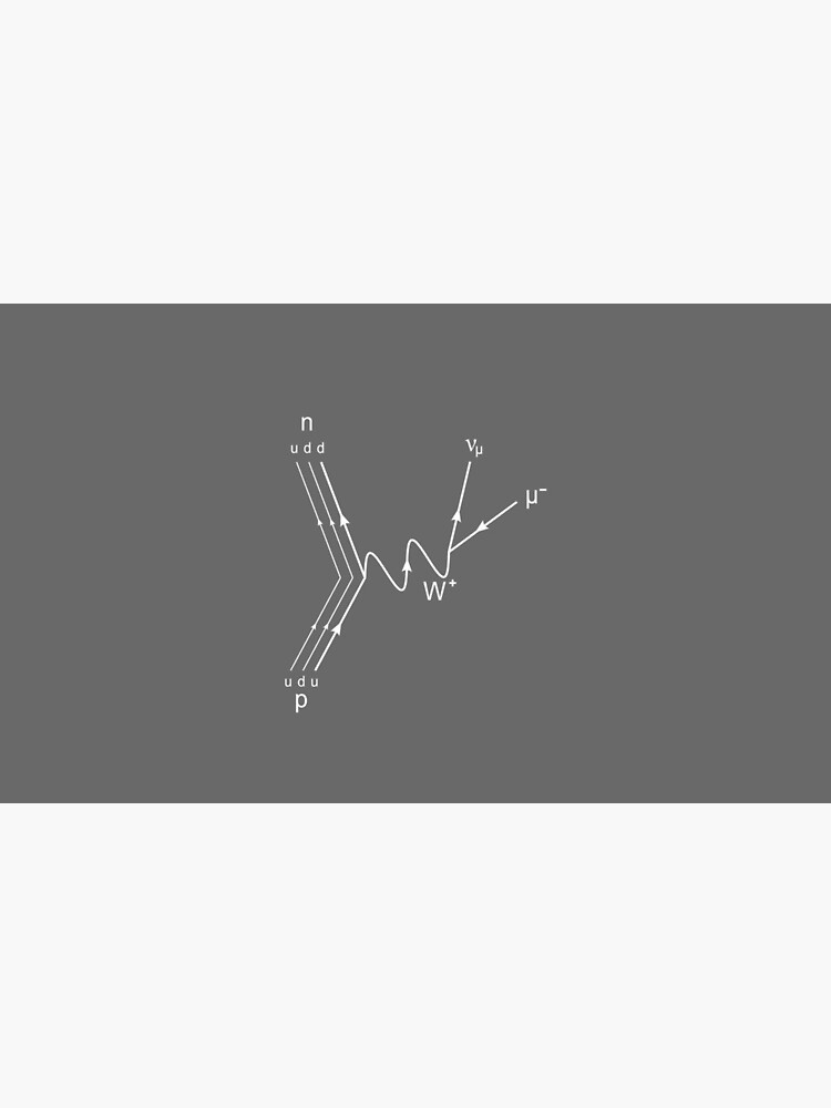 Muon Decay Feynman Diagram- Particle Physics  by the-elements