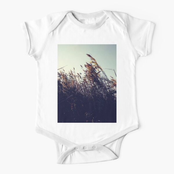 #winter #nature #snow #frost #outdoors #icee #cold #wood #season #bird #tree #frozen #dry #garden #grass #weather #horizontal #colorimage #nopeople #closeup #plant #day #animal Short Sleeve Baby One-Piece