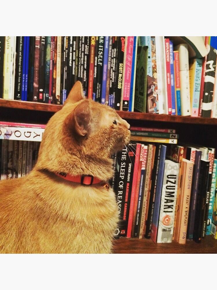 Book Cat by suitcaseofbks
