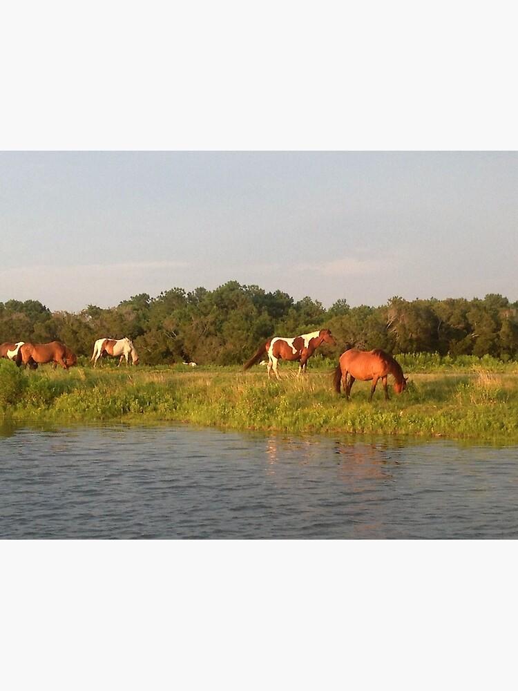 Chincoteague Ponies by suitcaseofbks