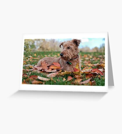 Autumnal Thoughts Greeting Card