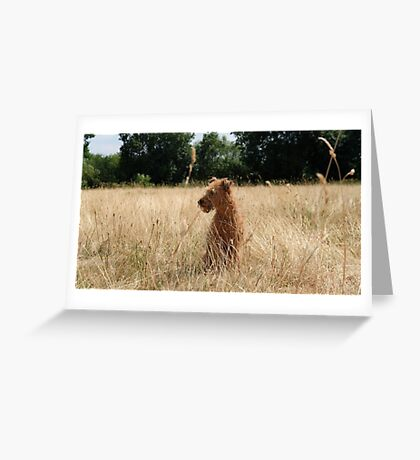 Keeping watch Greeting Card