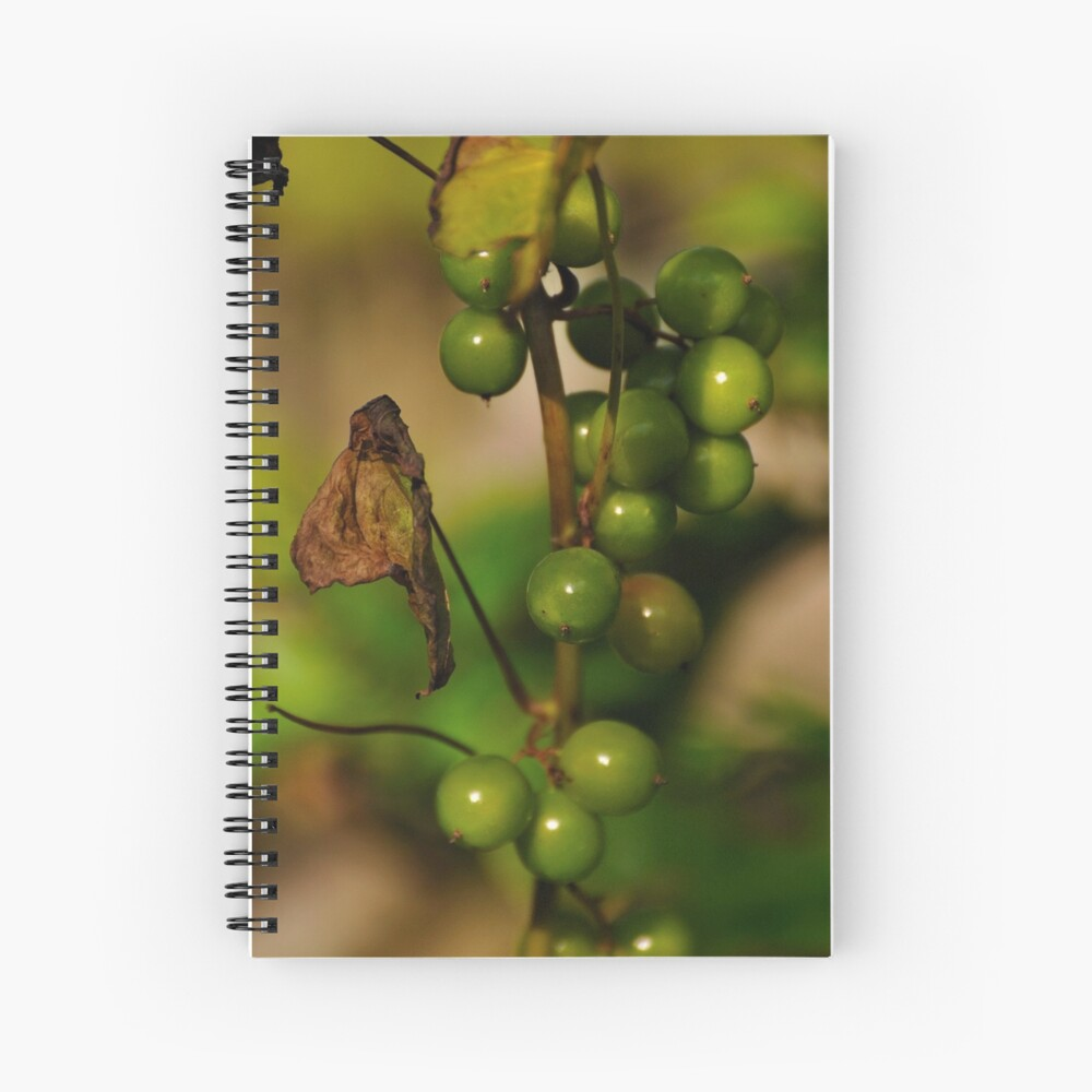 Convolvulous Berries Spiral Notebook