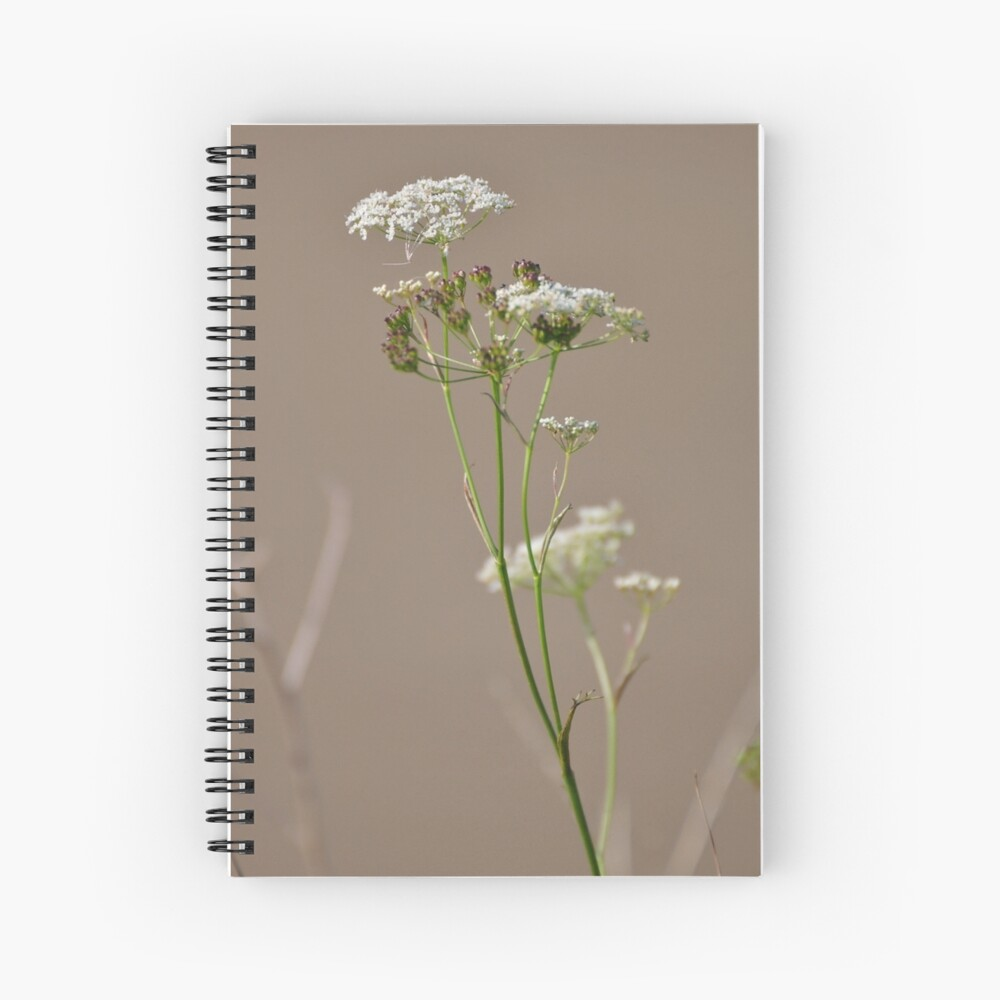 Untitled Spiral Notebook