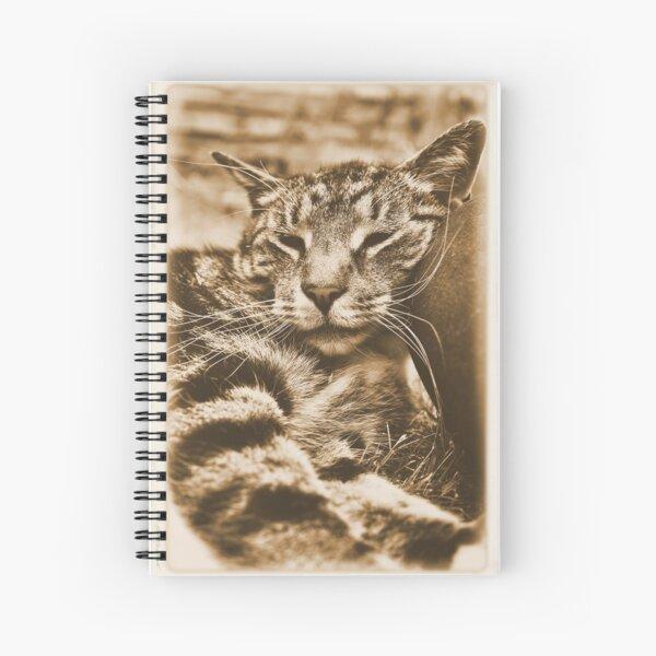 I Kneed an Older Pillow Spiral Notebook