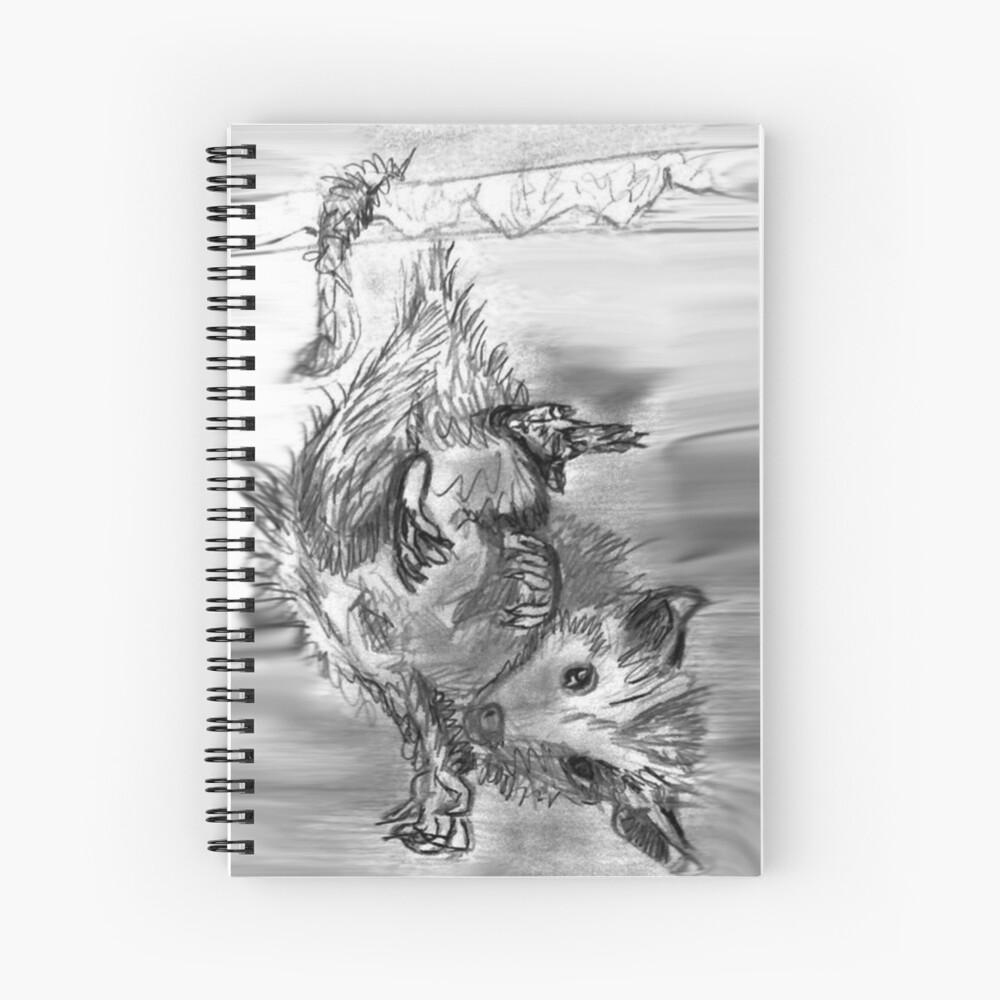 Sketchbook Opossum Spiral Notebook