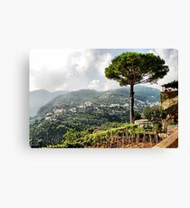 Vineyard in Ravello Canvas Print