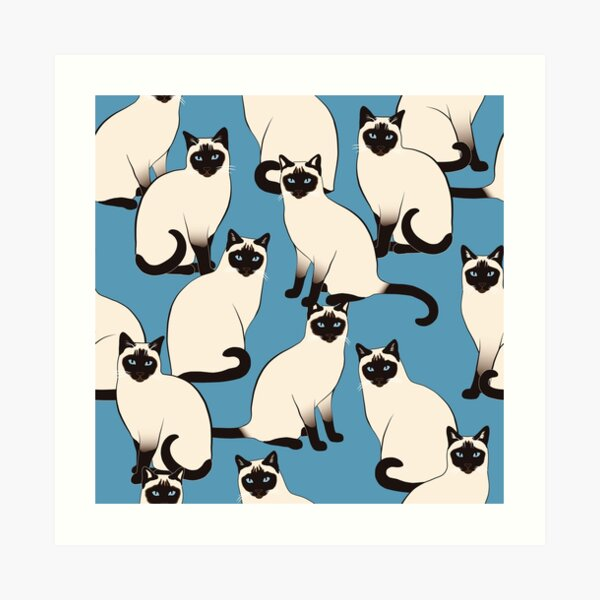 Siamese Cats Looking At You Art Print