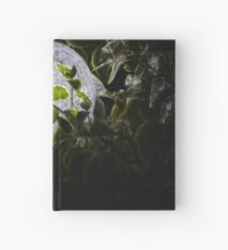 A light in the dark Hardcover Journal