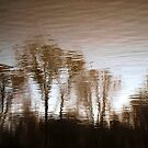 Water reflection VIII!...  by sendao