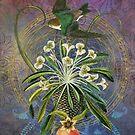 Celestial Flight by Helen K. Passey