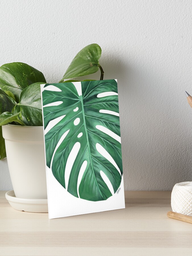 Monstera Tropical Leaf Painting Art Board Print By Ambloor Redbubble Lovepik provides 61000+ tropical leaves photos in hd resolution that updates everyday, you can free download for both personal and commerical use. redbubble
