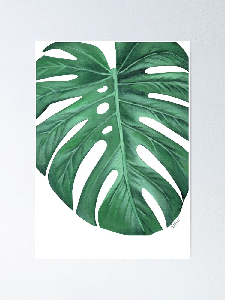 Monstera Tropical Leaf Painting Poster By Ambloor Redbubble Monstera leaves, tropical plant print, tropical leaves, printable wall art, instant download, modern wall art, wall decor, home decor. redbubble