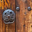 Old Knocker by Nickolay Stanev