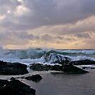 Sawtell Beach, NSW North Coast by Patricia Gibson