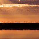 Loch Sport Wetlands II by Patricia Gibson