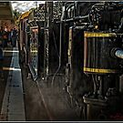 Steam Train at the Station by Wolf Sverak