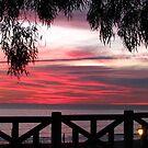Santa Monica Sunset II by Gloria Abbey