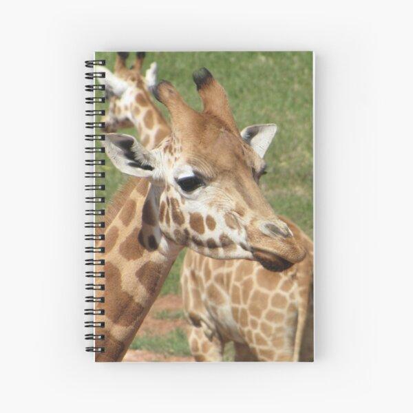 Giraffes - which way should we go? Spiral Notebook