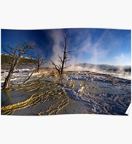 Mammoth Hot Springs - Catching Rays Poster