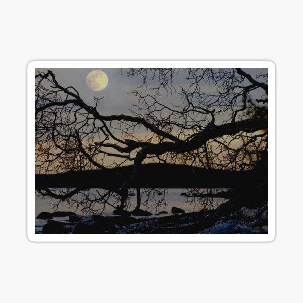 Moonlight at the Beach Sticker