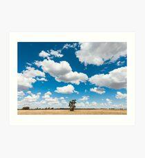Outback Field Art Print